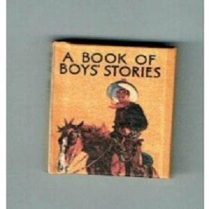 A Book of Boy's Stories 1910